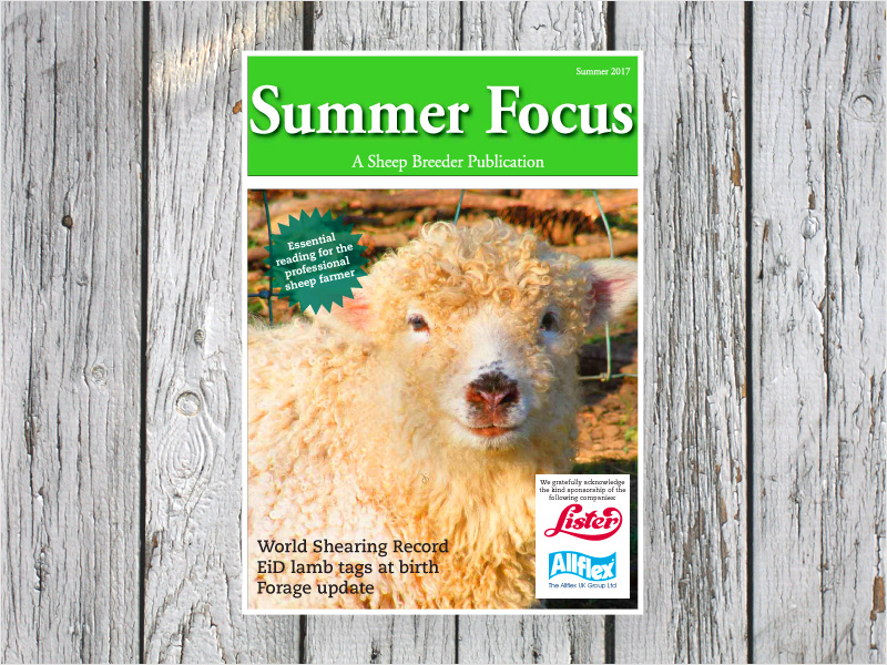 Summer Preview publication from Shepherd Publishing